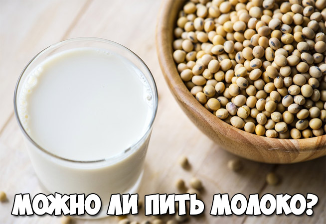 Можно ли пить молоко Влияние молока на остеопороз 1