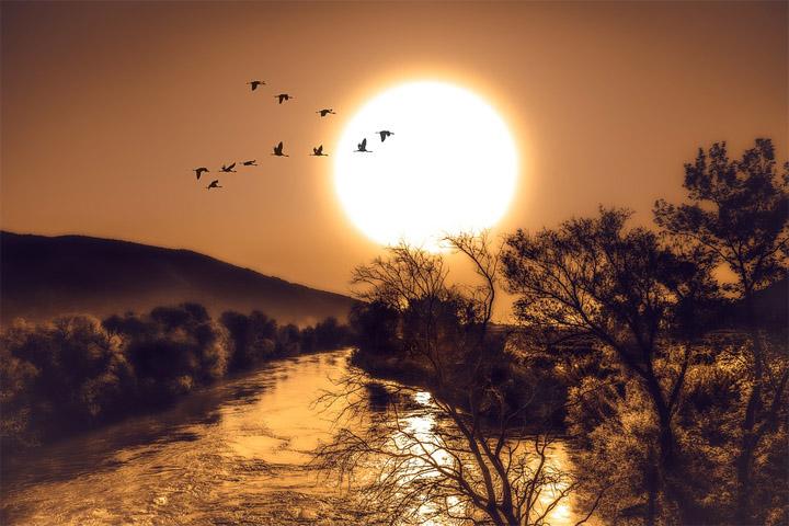 Невероятный и красивый закат Солнца летом - картинки и изображения 6