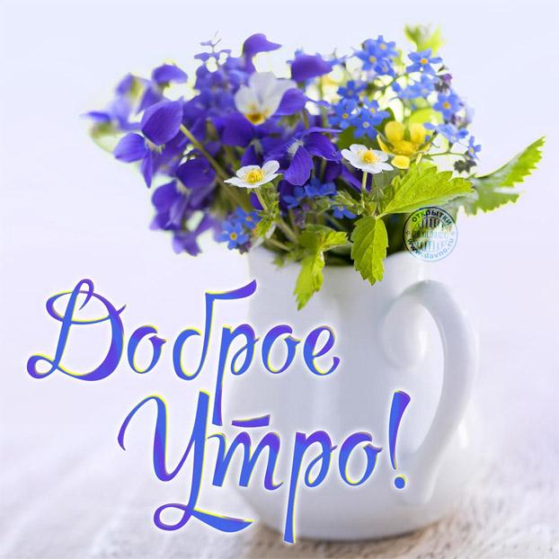 Открытки с добрым утром и хорошим настроением - подборка 4