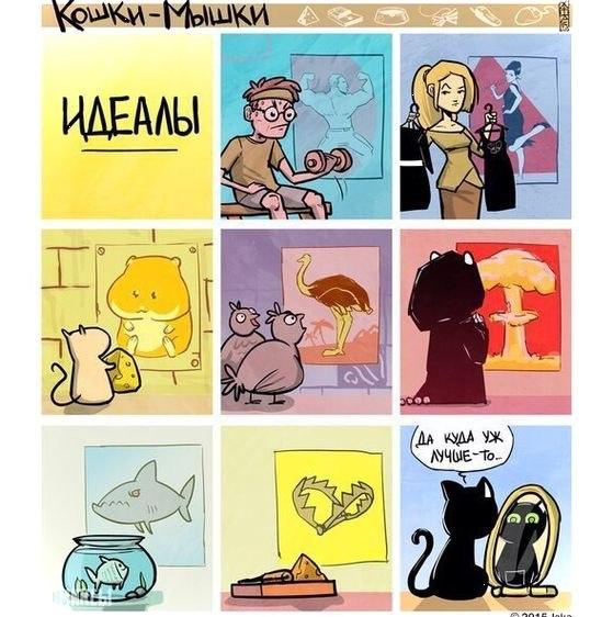 Подборка смешных комиксов, которая заставит вас улыбнуться №11 10