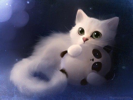 Прикольные и красивые картинки на аву кошки и котики - подборка 12