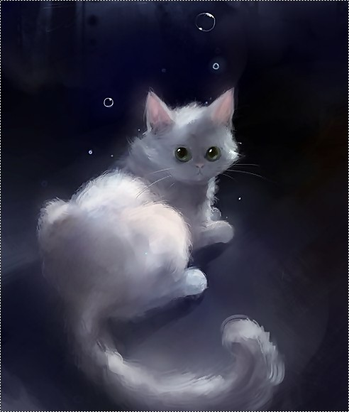 Прикольные и красивые картинки на аву кошки и котики - подборка 16