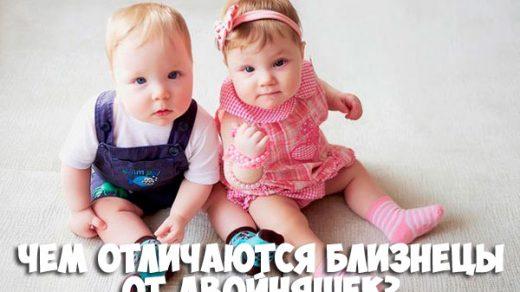 Чем отличаются близнецы от двойняшек - основная разница и отличия 1