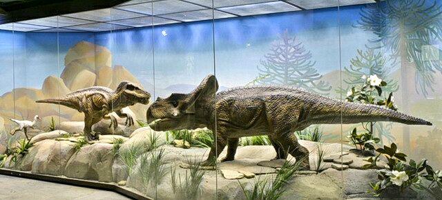 Дарвиновский музей что интересного, на что посмотреть 1