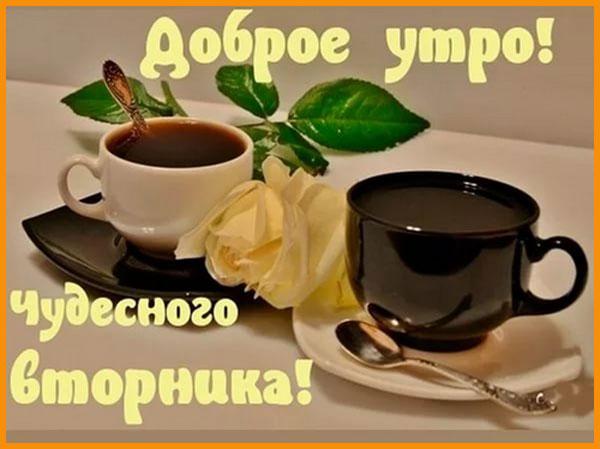 Доброе утро вторника - красивые картинки и открытки 6