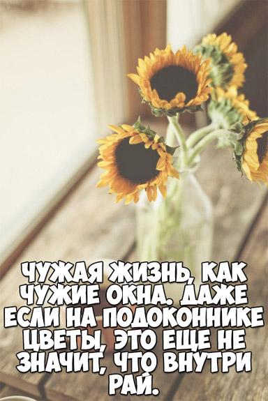 Интересные и красивые цитаты про цветы, растения - подборка 10