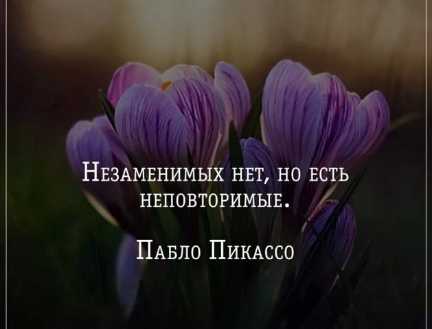 Интересные и красивые цитаты про цветы, растения - подборка 8