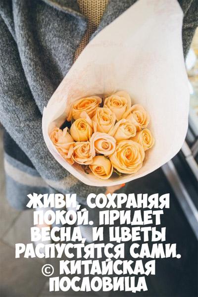 Интересные и красивые цитаты про цветы, растения - подборка 9