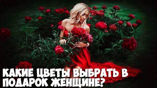 Какие цветы выбрать в подарок женщине по знаку зодиака - советы 1