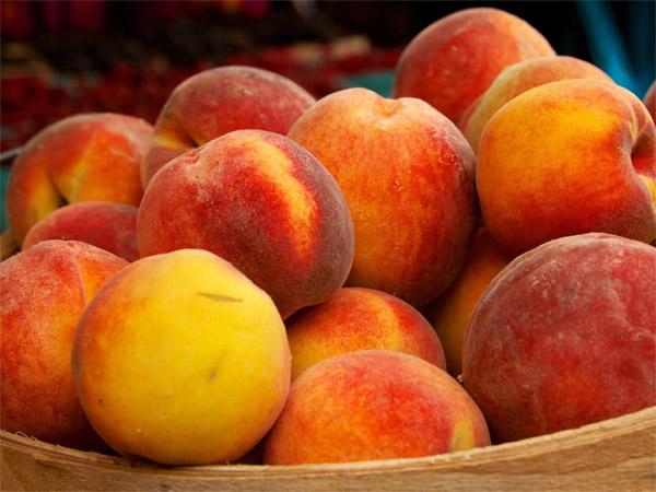 Как вырастить персик из косточки в домашних условиях - техника, правила 1