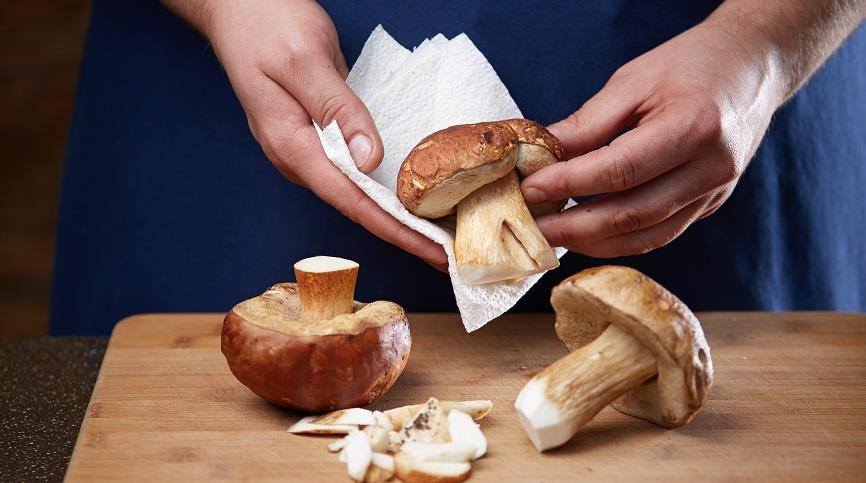 Как сушить белые грибы в домашних условиях - основные способы 2