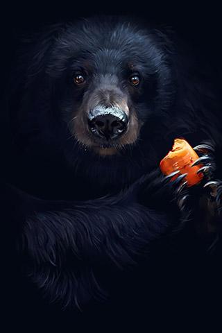 Картинки на телефон медведи, аватарки с медведями - подборка 9