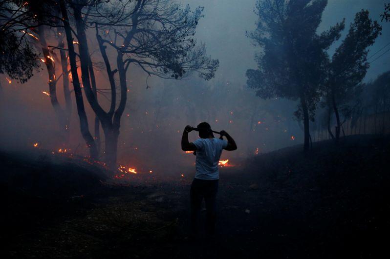 Масштабные лесные пожары в Греции - новости с фото 1