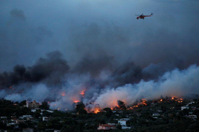 Масштабные лесные пожары в Греции - новости с фото 4