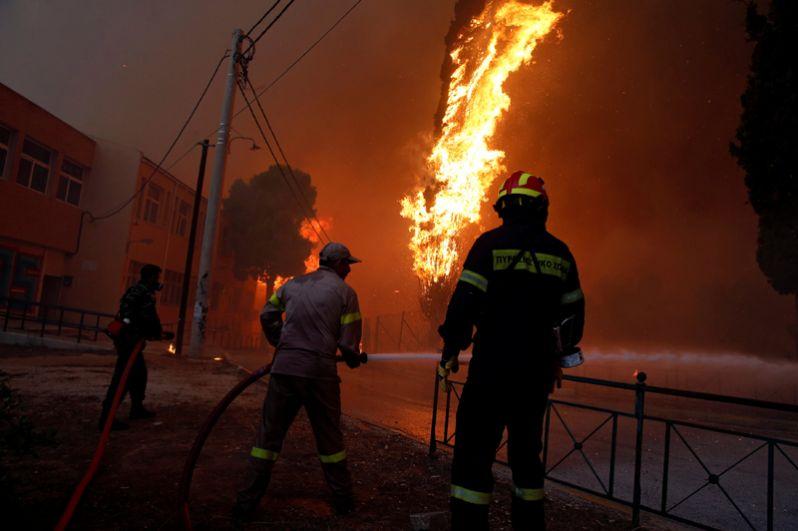Масштабные лесные пожары в Греции - новости с фото 5