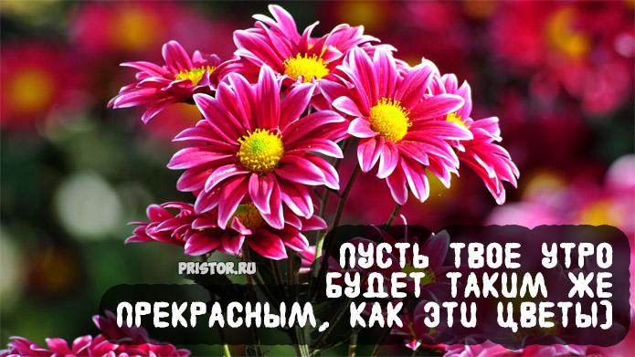 Открытки с пожеланиями доброго утра, хорошего и удачного дня 5