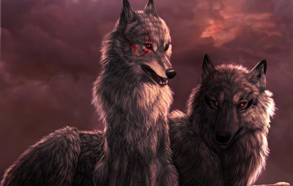Очень красивые картинки волка и волчицы - подборка изображений 1