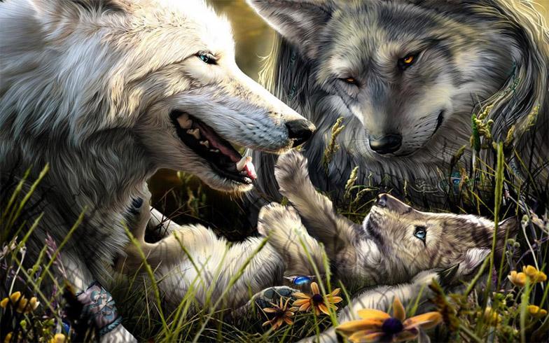 Очень красивые картинки волка и волчицы - подборка изображений 18