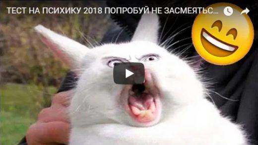 Попробуй не засмеяться, лучшие видео приколы сети - подборка №120