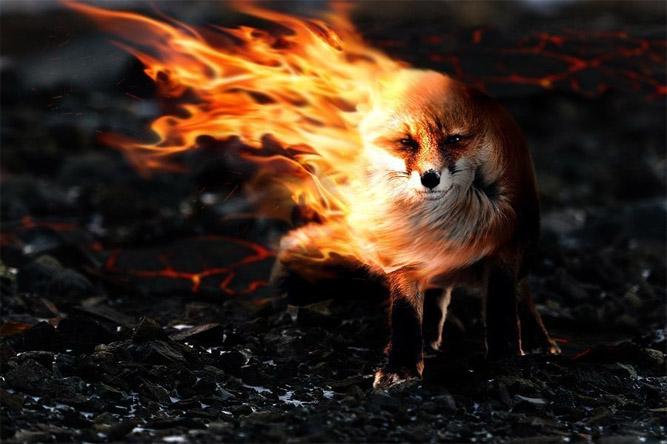 Прикольные и красивые картинки на аву огонь, пламя - подборка 2018 11