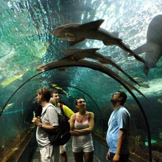 ТОП-8 необычных мест, которые следует посетить на Тенерифе 2