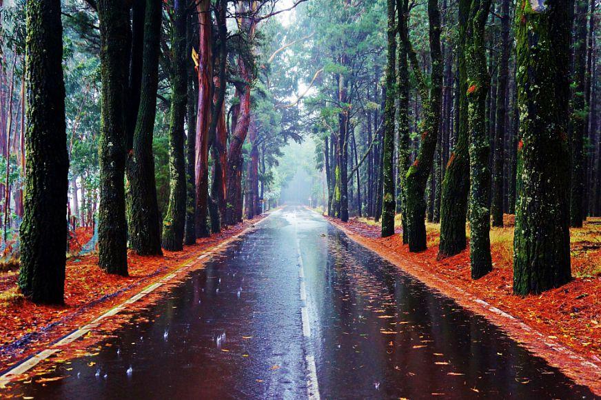ТОП-8 необычных мест, которые следует посетить на Тенерифе 4