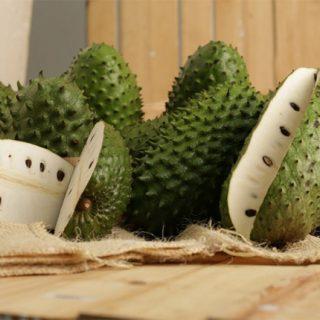 Гуанабана (сметанное яблоко, саусеп) - полезные свойства фрукта 2