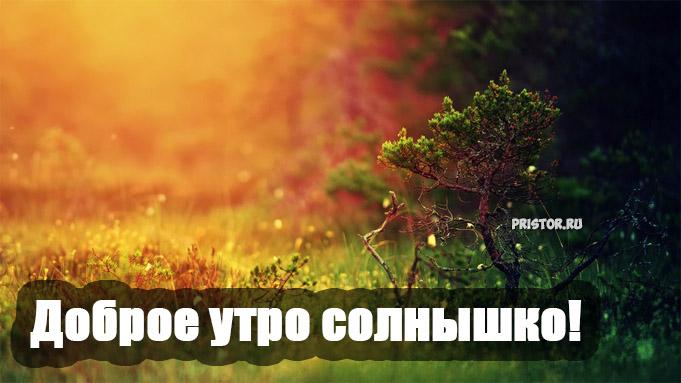 Доброе утро солнышко - красивые картинки и открытки любимой девушке 10