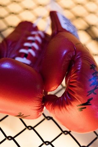 Картинки, фотки бокса для заставка телефона - подборка 2018 4