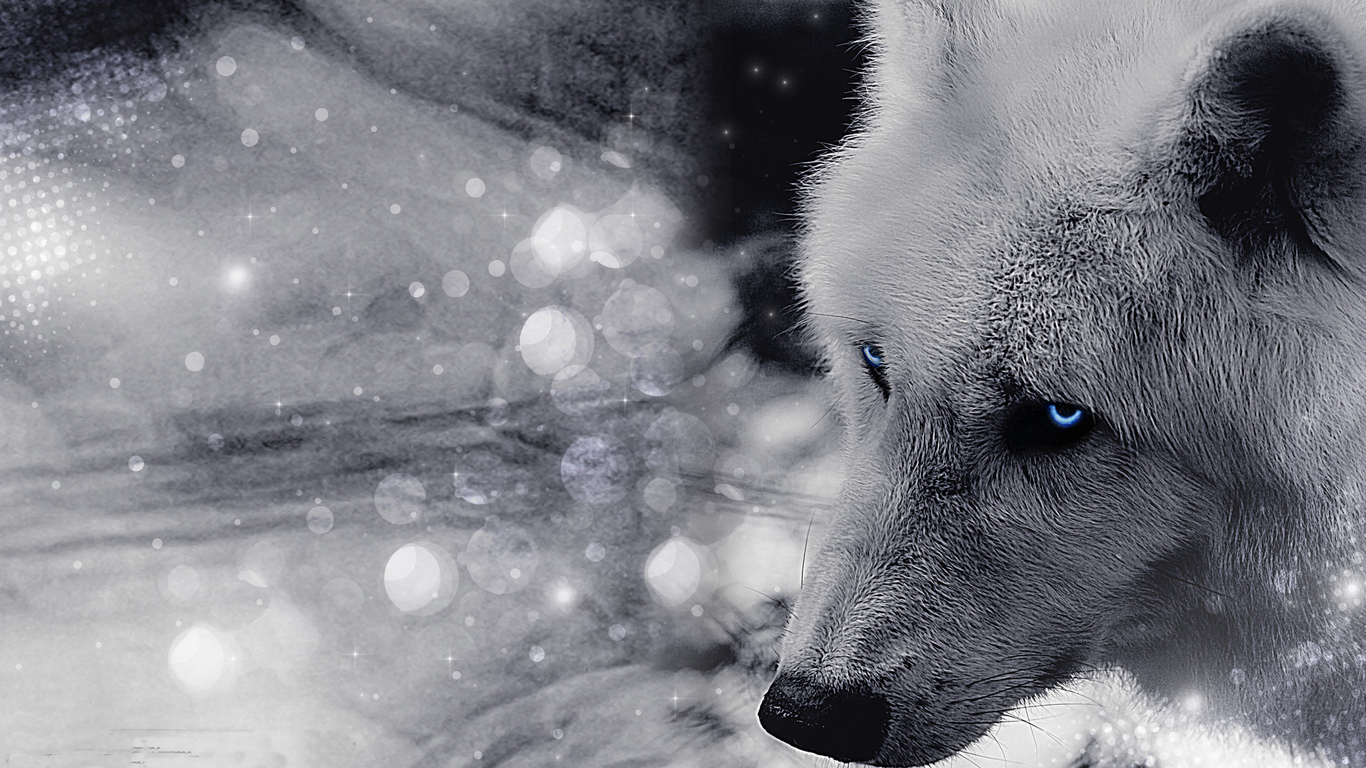 Классные картинки на рабочий стол волки, волчица, волк - подборка 4