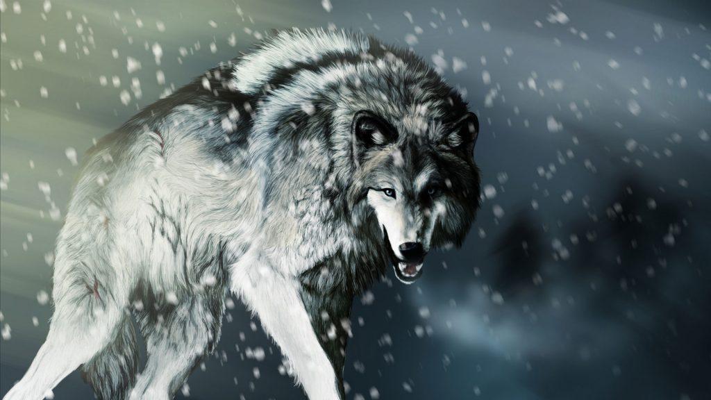 Классные картинки на рабочий стол волки, волчица, волк - подборка 6