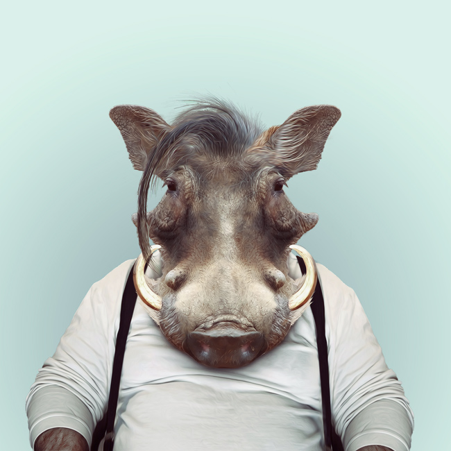 Красивые картинки на аву животные и зверюшки - милая подборка 12