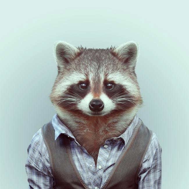 Красивые картинки на аву животные и зверюшки - милая подборка 9