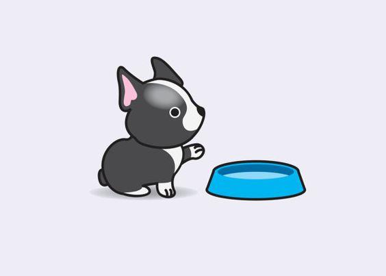 Легкие и простые картинки животных для срисовки - подборка для детей 11