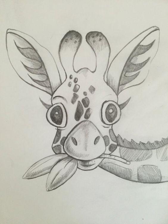 Легкие и простые картинки животных для срисовки - подборка для детей 16
