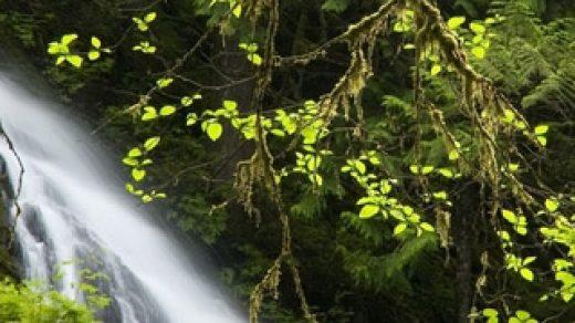 Невероятные и красивые пейзажи картинки на заставку телефона 13
