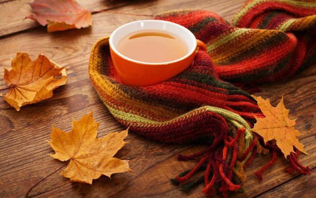 Осеннее утро, утро осенью - красивые и невероятные картинки 14