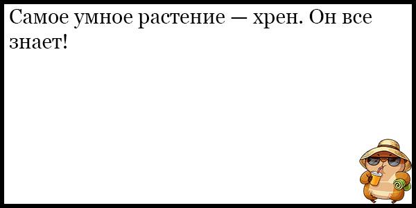 Подборка угарных и смешных анекдотов за август 2018 - подборка №119 7