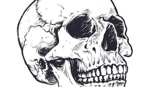 Рисунки и картинки для срисовки череп, черепок - самые прикольные 11