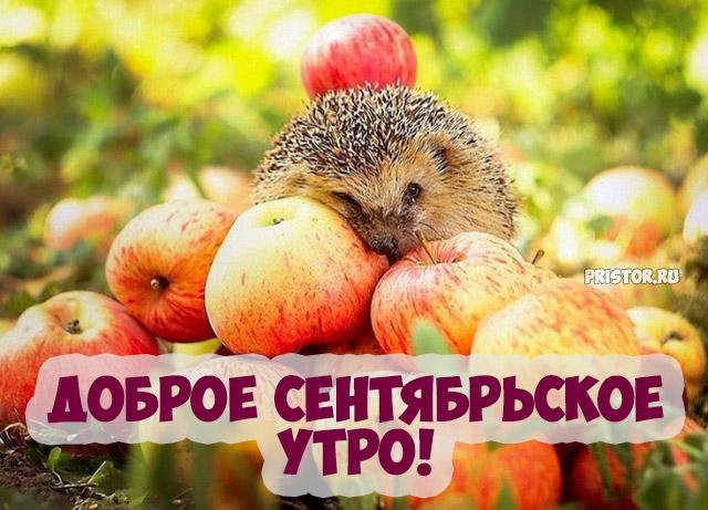 Доброе сентябрьское утро! - красивые картинки и открытки 6