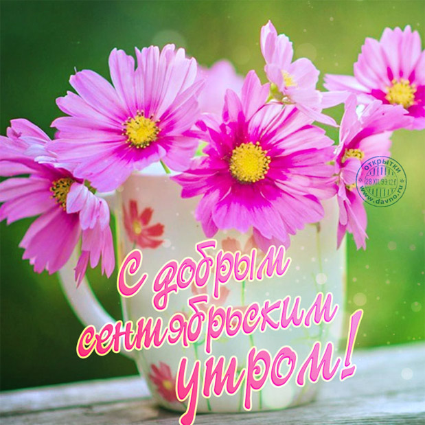 Доброе сентябрьское утро! - красивые картинки и открытки 7