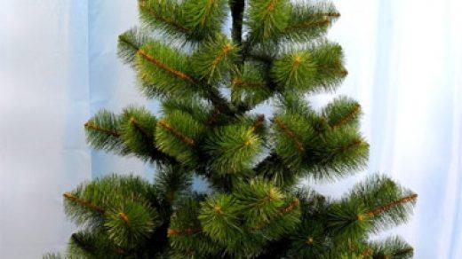 Как выбрать елку к Новому Году Новый Год 2019 - как выбрать елку 3