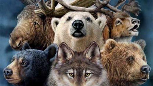 Как определить ваше тотемное животное Что означает тотемное животное 2