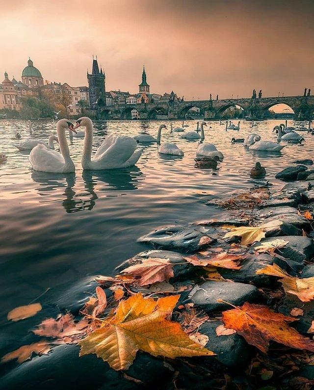 Красивые и невероятные картинки про отдых и путешествия - 30 фото 14