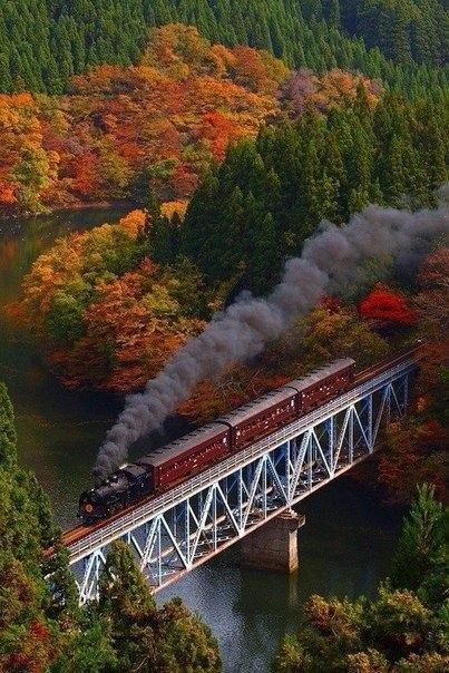 Красивые и удивительная осень. Подборка картинок 20 штук 16