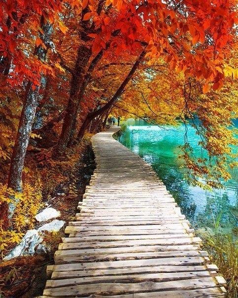 Красивые и удивительная осень. Подборка картинок 20 штук 2