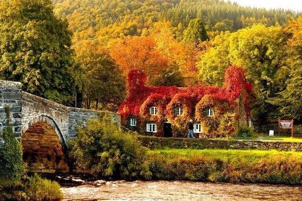 Красивые и удивительная осень. Подборка картинок 20 штук 6