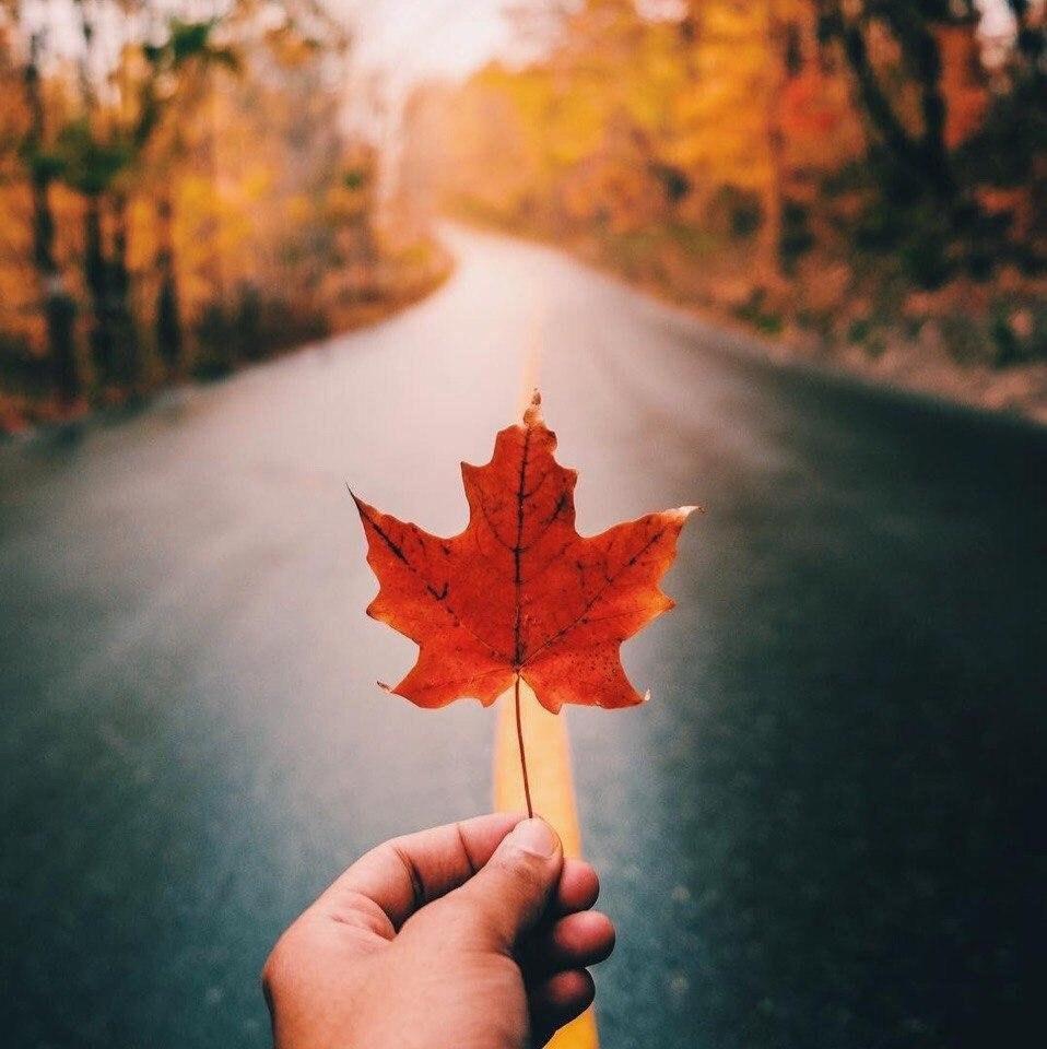 Красивые и удивительная осень. Подборка картинок 20 штук 7