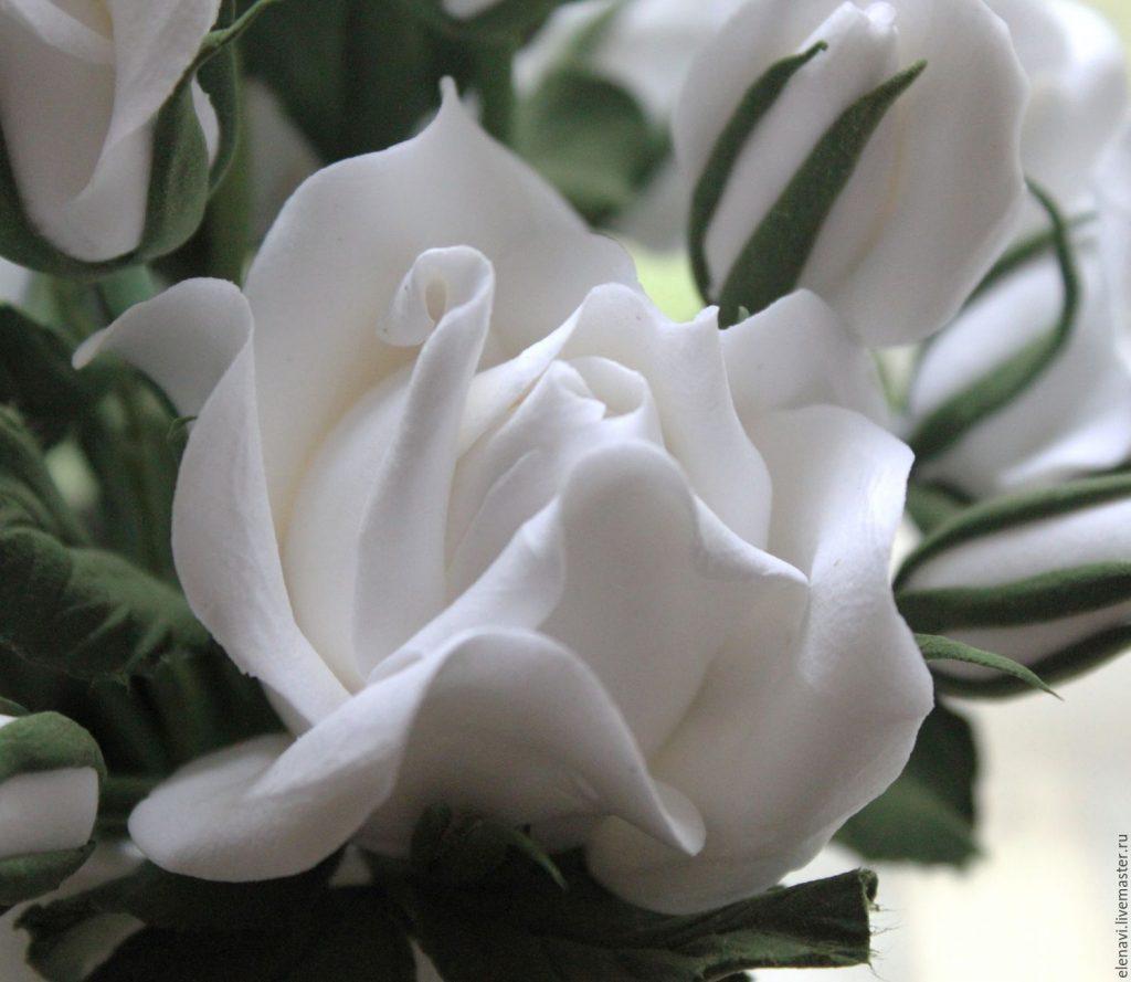 Красивые картинки цветов белые розы, удивительные букеты 3