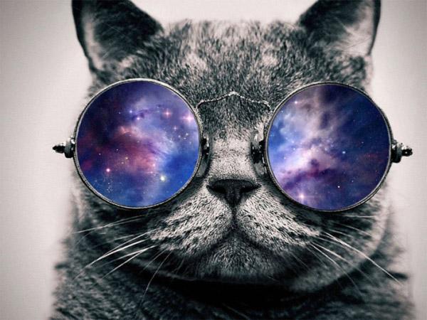 Лучшие фото и картинки на аву очки или в очках - подборка 5